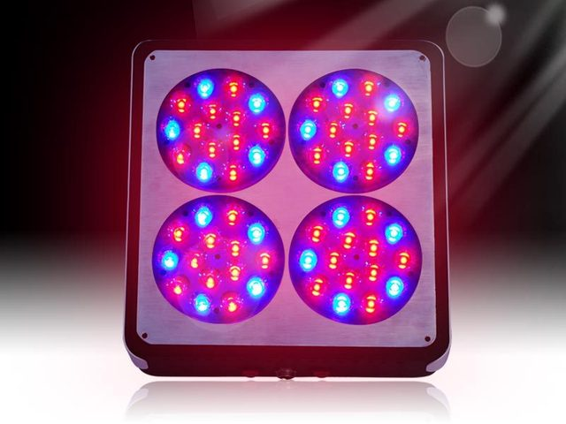 Apollo 4 180w LED Grow Light Full Spectrum LED Plant grow Light for Agriculture Greenhouse Grow & Apollo 4 180w LED Grow Light Full Spectrum LED Plant grow Light ...