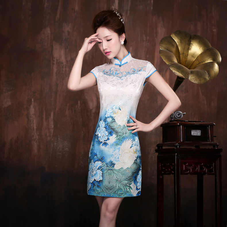 Traditional Chinese Dress Bird Costume Pattern Lace Collar Short