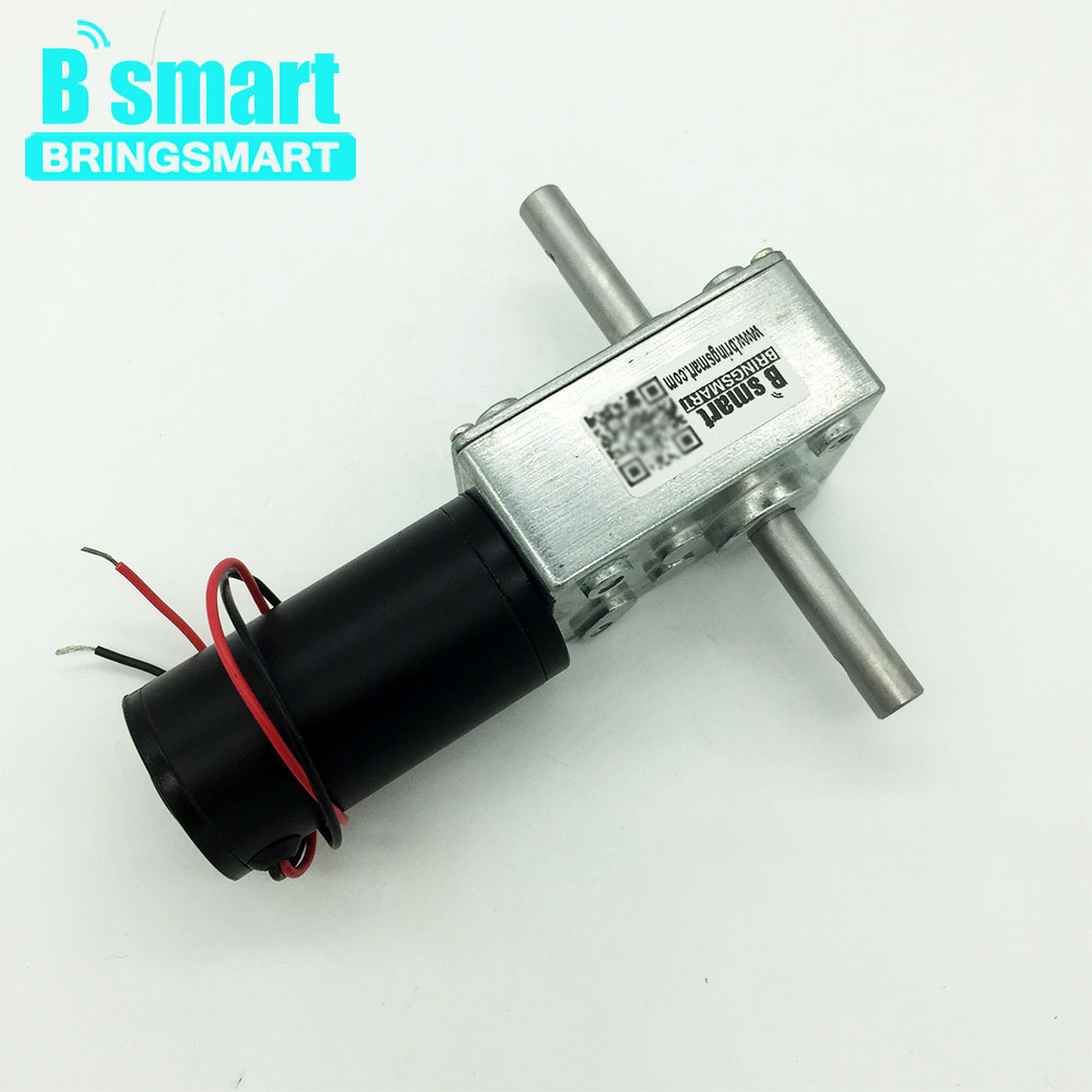 Bringsmart 5840-31zy Worm Gear Motor DC 12V Dual Shaft DC Motor 24V High Torque Reversed Reducer Self-lock Automatic Drying Rack bringsmart worm gear motor high torque 70kg cm 12v dc motor mini gearbox 24v motor reversed self lock engine diy parts a58sw31zy