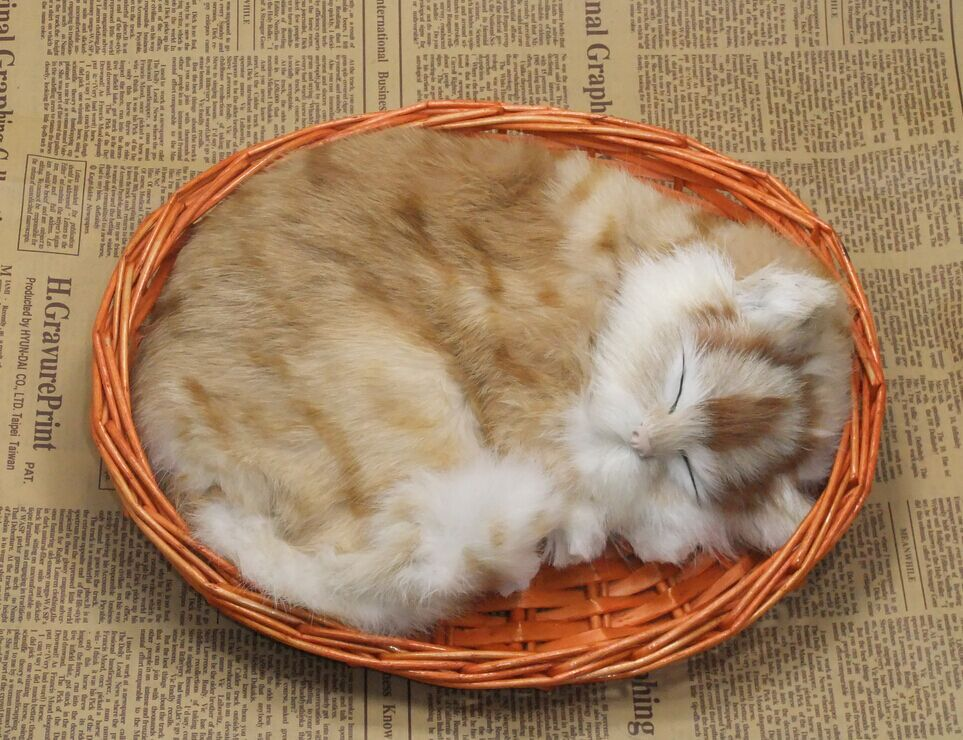 cute simulation sleeping cat lifelike handicraft cat doll in a basket gift about 25x21cm new simulation cat sleeping cat lifelike white cat model gift about 19x8x14cm