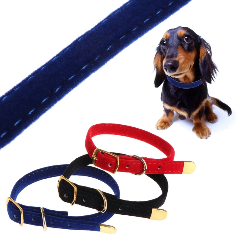 Pet Cat Collars for Kittens Puppies Solid Cat Collars Breakaway Pet Products for Dog-Collar Products for Small Dogs -M20
