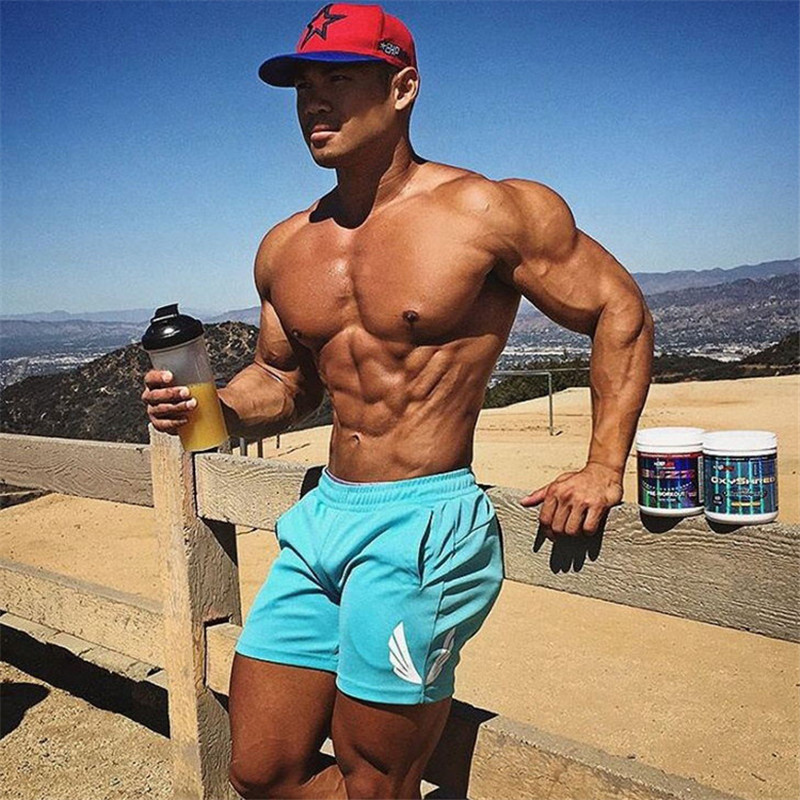 2019 Summer Mens Cotton Shorts Gyms Fitness Bodybuilding Male Casual Joggers Workout Brand Short Pants Sweatpants