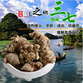 250g Chinês Real Wenshan Panax Notoginseng Sanqi Raiz Orgânica Yunnan Tianqi Pseudo Ginseng Ervas Cuidados de Saúde Em Pó Hemostático