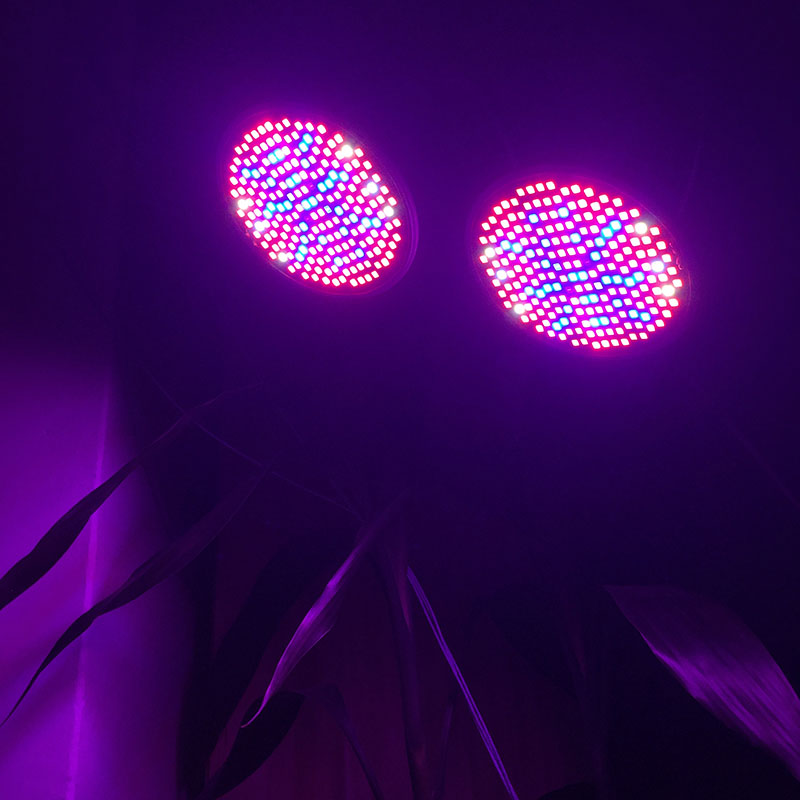Espectro completo dupla cabeça 200 led planta