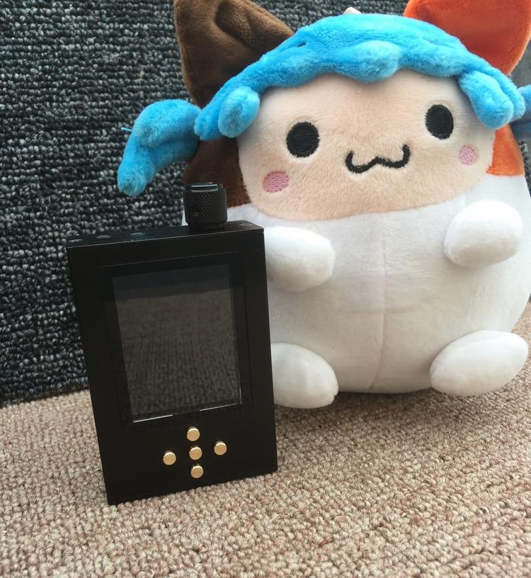 Zishan DSD DIY 16 г MP3 проигрыватель профессиональный без потерь HiFi переносной плеер AK4495SEQ DSD жесткий решение