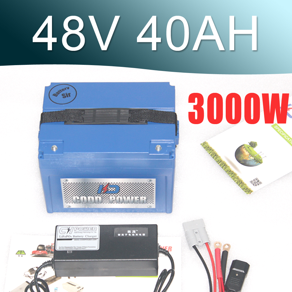 48V 40AH Electric Bike battery 48V Electric bicycle battery with 3000W BMS