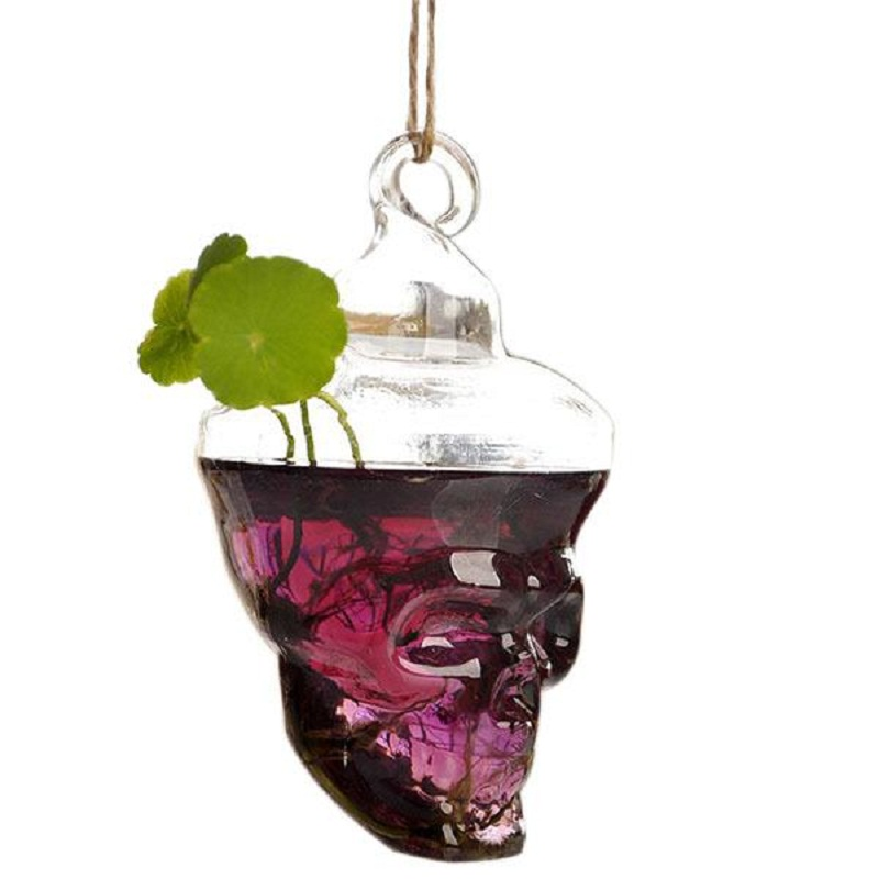Hot New Cool Glass Skull Shape Flower Plant Stand Hanging Vase Hydroponic  Home Office Wedding Decor Home Supplies