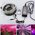 LED Grow Lights DC12V Growing LED Strip Full Spectrum Aquarium greenhouse Plant Growth Light Set + Adapter + remote controller