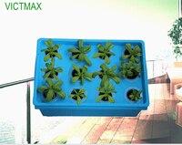 VICTMAX 1 Zestaw 12 Otwory System Hydroponicznych Roślin Miejscu Ogród Doniczki Szkółkarskie Ogród Rosną Zestaw Pudełko