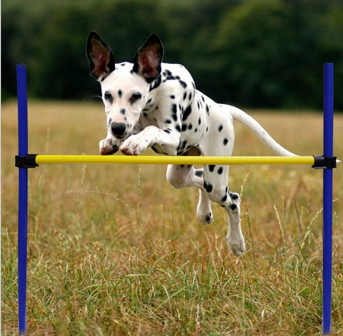 Pet Dogs Outdoor Games Agility Exercise Training Equipment - Jump Hurdle bar Obedience Show Training For Doggie
