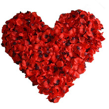 Valentine's Day Red Silk Petals Romantic Wedding Party for H