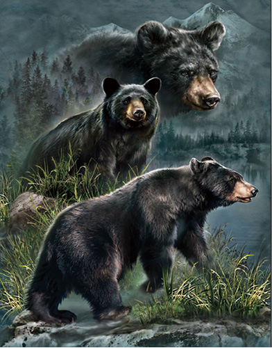Black Bear Lenticular 3D Picture Animal Poster Painting Home Wall ...