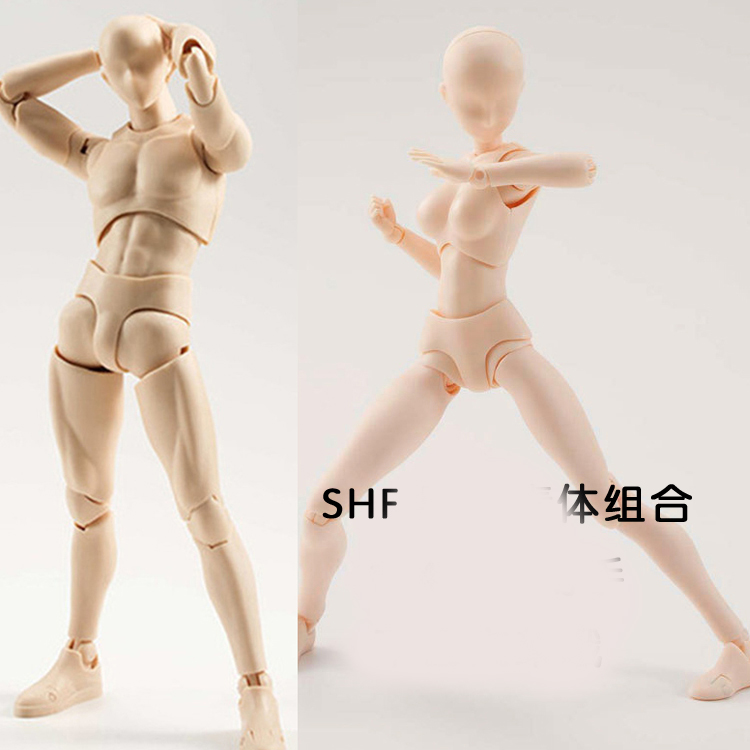 Male And Female Painted Art Doll Carton Drawing Model Human Body