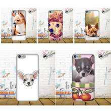 Soft TPU Original For Galaxy A3 A5 A7 J1 J3 J5 J7 S5 S6 S7 S8 S9 edge Plus 2016 2017 All You Need Is Chihuahua Dog Puppies(China)