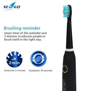 Image 3 - חדש Seago סוניק חשמלי מברשת שיניים SG 507 למבוגרים טיימר מברשת USB מטען נטענת שן מברשות/החלפת מברשת ראשי/תיבה
