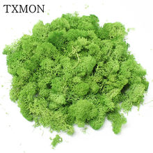 1000g high quality simulation green plant immortal fake flower moss grass home living room decorative wall DIY flower decoration(China)
