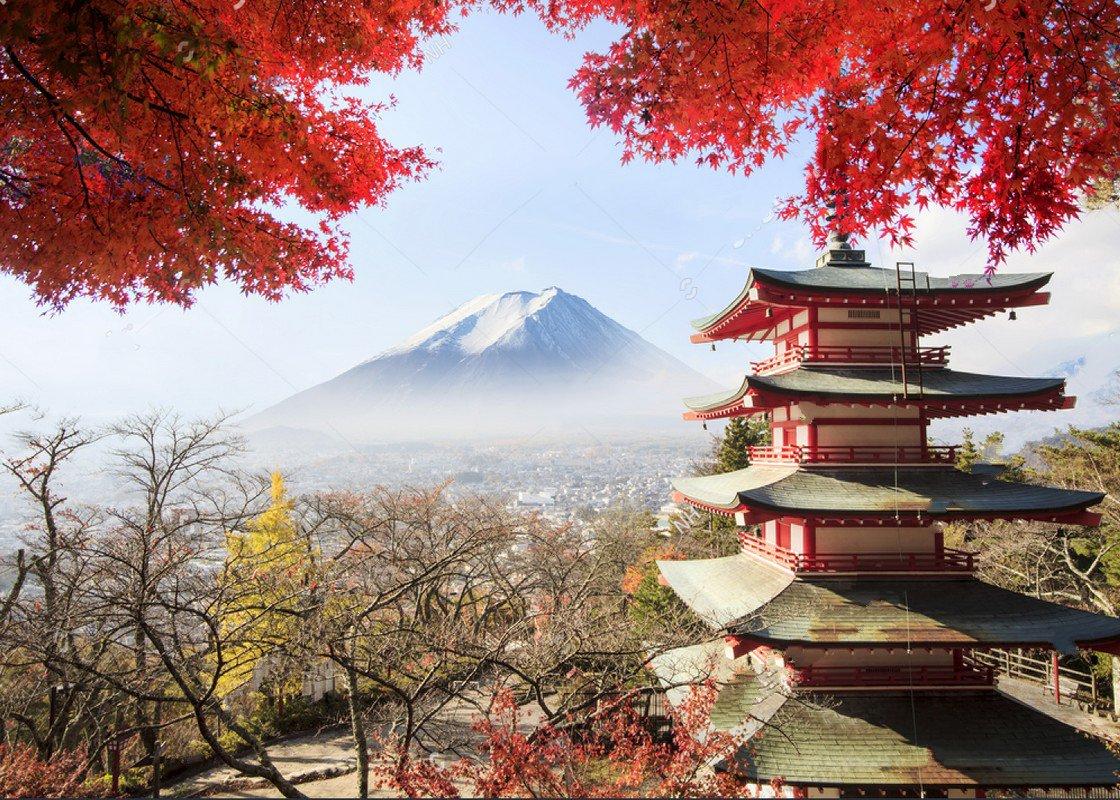 frozen Mt. Fuji Japan fall colors Maple Leaf tree Kiyomizu ...
