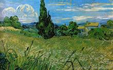 Green Wheat Field With Cypress Vincent Van Gogh