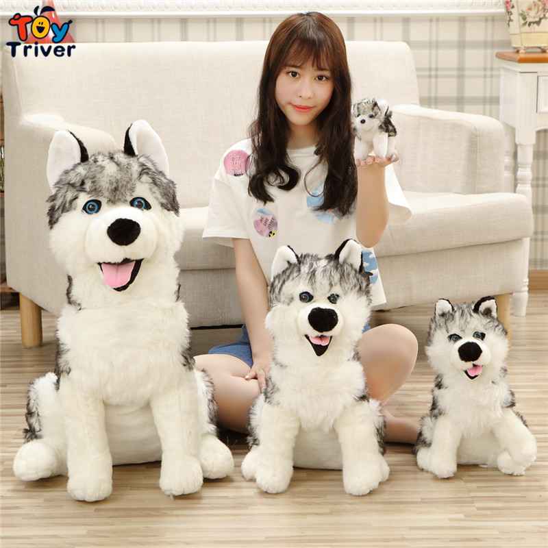 Quality Plush Simulation Wolf Dog Toy Stuffed Animal Doll Kids Baby Dog Lover Friend Birthday Gift Present Home Shop Deco Triver plush pink angel pig toy stuffed animal doll pigs baby kids children kawaii birthday gift home shop decoration ornament triver