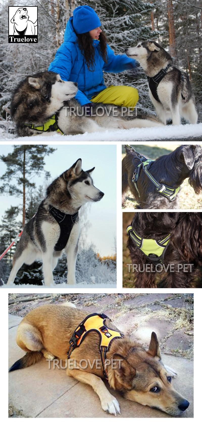 Peitoral para Cachorro | Extra Confortável e Refletivo | Frete Gratis