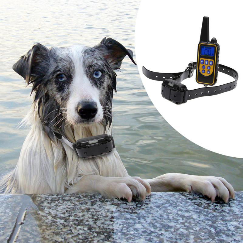 Rechargeable Waterproof Electronic Dog Training Collar Stop Barking LCD Display 800m Remote Electronic Shock 3Training Collars