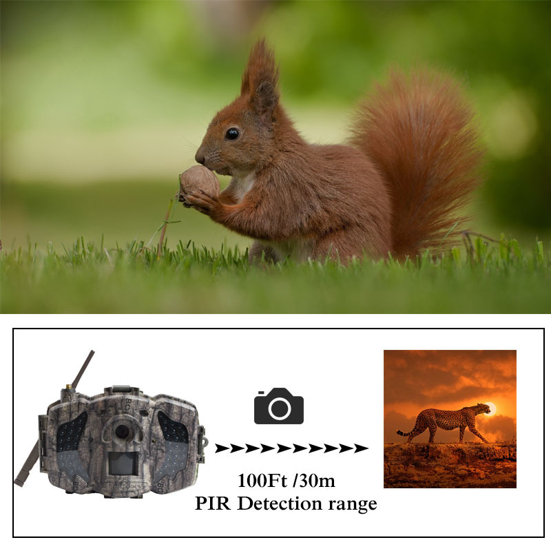 Image 5 - Bolyguard 3G Hunting Trail game Camera 36MP 1080PH Wireless Photo Trap Camera 100ft SMS MMS GPRS wild camera chass thermal image-in Hunting Cameras from Sports & Entertainment
