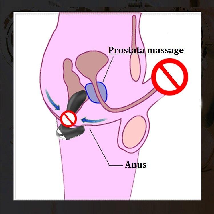 Butt Plug And Vibrator