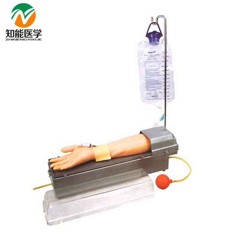 Rotatable Radial Artery Puncture Arm Model(Medical Model) BIX-HS8 W138 child bone marrow puncture and femoral venous puncture model