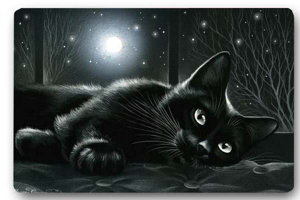 Popular Black Cat Rug Buy Cheap Black Cat Rug Lots From