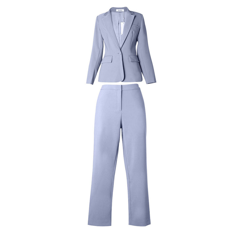 Shop3010017 Store ZIYI Fashion OL Women's Pant Suits High Quality Office Lady Band Long Sleeve Tops And Ankle-Length Pants Suits SYK