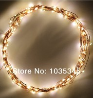 Waterdicht 120 LEDs Warm Fairy lichtslingers op Koperdraad kerst bruiloft lichten Inbegrepen Power Adapter Outdoor en Indoor Gebruik