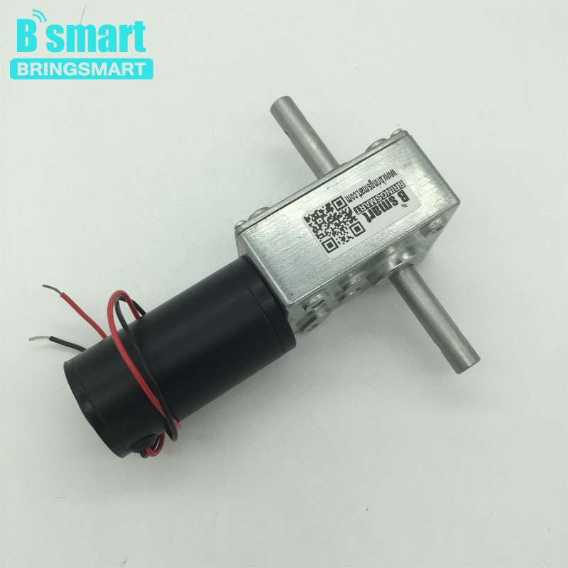 Bringsmart 5840-31zy Double Shaft Motor 24V DC Worm Geared Motor 4V DC Reducer Motors High Torque Reversed Self-lock for Robot ce emc lvd fcc ozonator portable