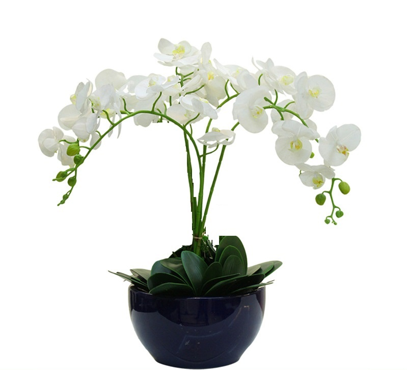 Flower Orchid Orkidéer (4st Orchid + 3st blad) Real Touch Flower Dining-Table Decoration Bröllop Flower Gratis frakt