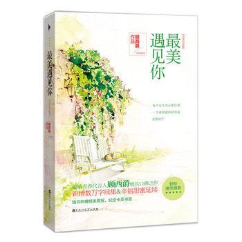 Classic Modern Literature Book In Chinese: Zui Mei Yu Jian Ni Chinese Famous Fiction Book