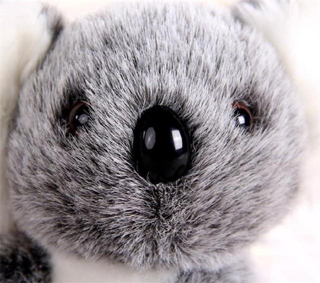 16CM New Arrival Super Cute Small Koala Bear Plush Toys Adventure Koala Doll Birthday Christmas Gift PT024 2