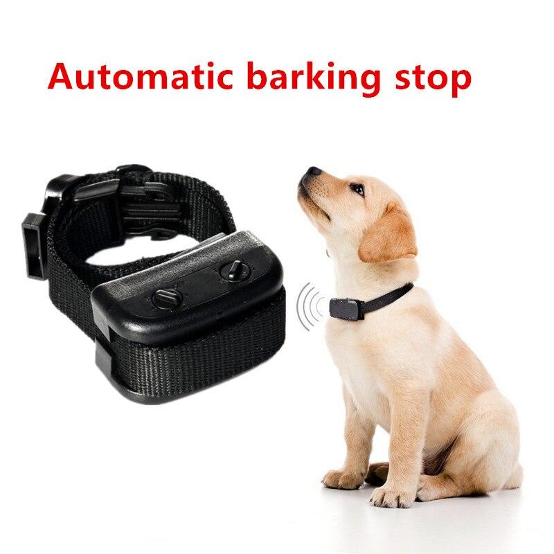 bark collar (1)