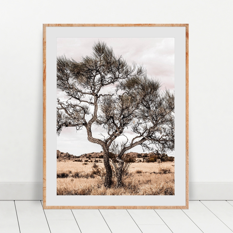 Australian Outback Landscape Wall Art Print Desert Tree Photography Poster Canvas Painting Wall Picture Boho Home Room Decor