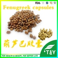 GMP Certified Common Fenugreek Seed Extract capsules 500mg*100pcs/Bag