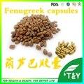 GMP Certified Comum Fenugreek Extrato De Semente de cápsulas de 500 mg * 100 pcs/Bag