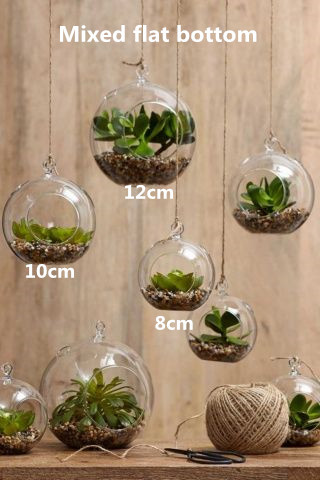 6pcs Set Hanging Tealight Holders N Gl Globe Plant Terrariums Great For Air Plants Succulents Indoor Gardening