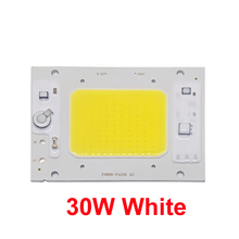 5PCS/LOT LED COB Chip Lamp 30W 40W 50W AC220V 110V IP65 Smart IC Fit For DIY Flood Light Cold White Warm