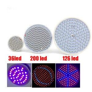 Image 3 - Volledige Spectrum Planten Groeien Led lampen Lamp Verlichting Voor Vegs Hydro Bloem Kas Veg Indoor Tuin E27 Phyto Growbox