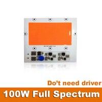 2 stks Echt 100 W Volledige Spectrum LED Chip 220 V Lamp Driverless (niet nodig driver) DIY voor Kasplant Groeien Licht Aquarium