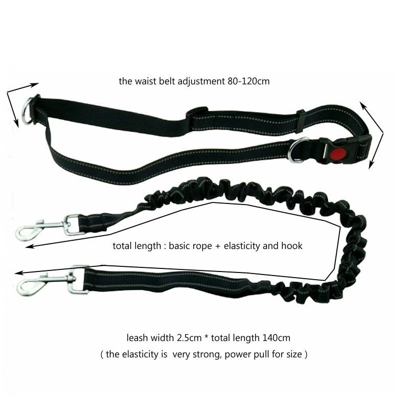 [TAILUP] Pet Dog Running Leashes Χέρια ελεύθερα για - Προϊόντα κατοικίδιων ζώων - Φωτογραφία 2