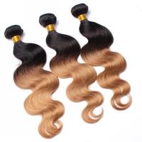 3 Pcs Ombre Human Hair Bundles Hair Pre Color 1b 27 Honey Blonde Ombre Brazilian Hair