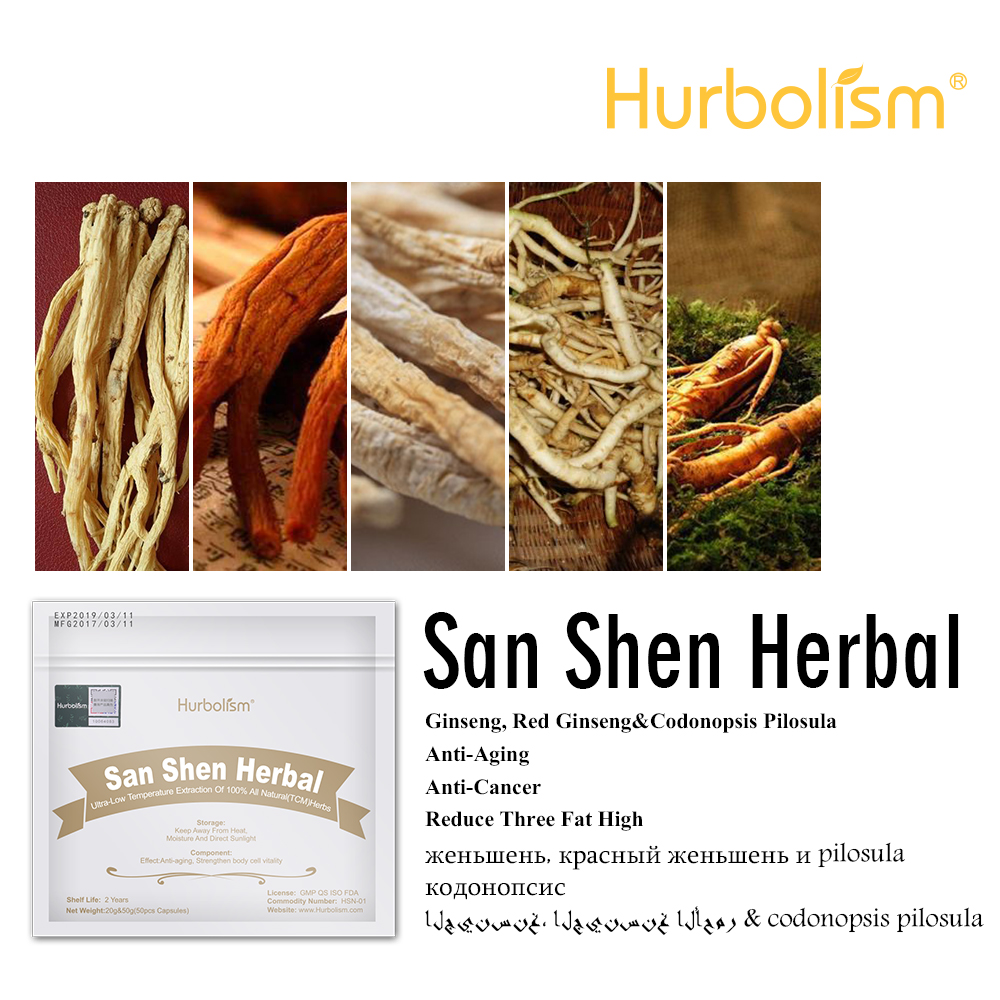 San Shen Herbal Cure Arrhythmia And Atrial Fibrillation, Improve Heart Function, Increase Coronary Blood Flow, Reduce Blood Fat