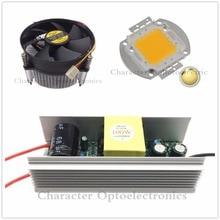 100W 100Watt High Power warm/cool White LED Light +Heatsink Cooler+100W Driver 85-265v
