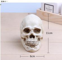 wholesale 11*6cm Mini gold skull Halloween head mannequin, resin skull, medical art, copying, drawing, sculpture ghost. M01007