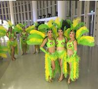 Cosplay festival carnival costumes Singer dance show women's sexy feather wings costume Samba feather backboard for women