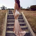 Robe De Soiree Spahetti Straps Backless Sexy Long Prom Dresses Lace Appliques Evening Dresses 2017 Fashion Vestido Longo